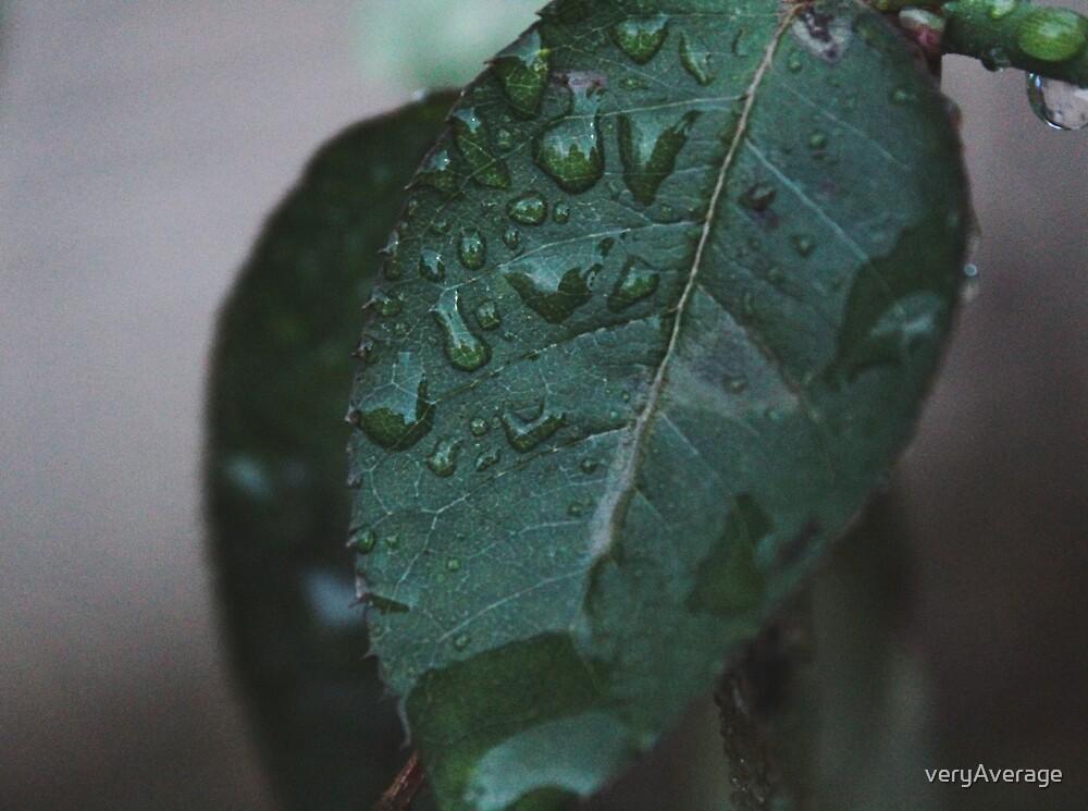 wet leaves by veryAverage