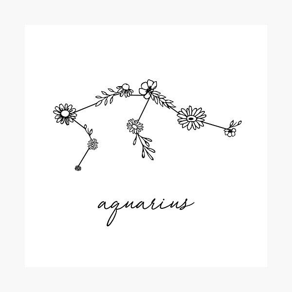 Aquarius Zodiac Wildflower Constellation Photographic Print
