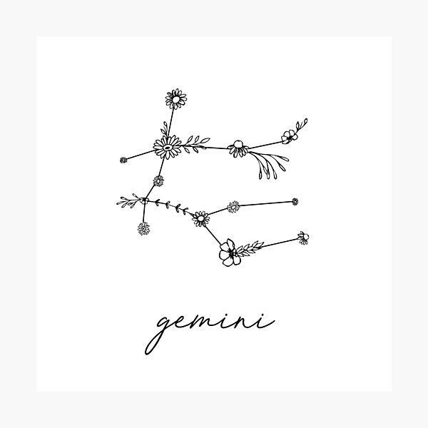 Gemini Zodiac Wildflower Constellation Photographic Print