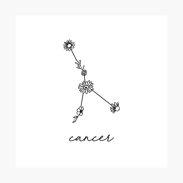 Cancer Zodiac Wildflower Constellation Photographic Print