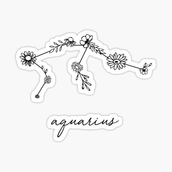 Aquarius Zodiac Wildflower Constellation Sticker
