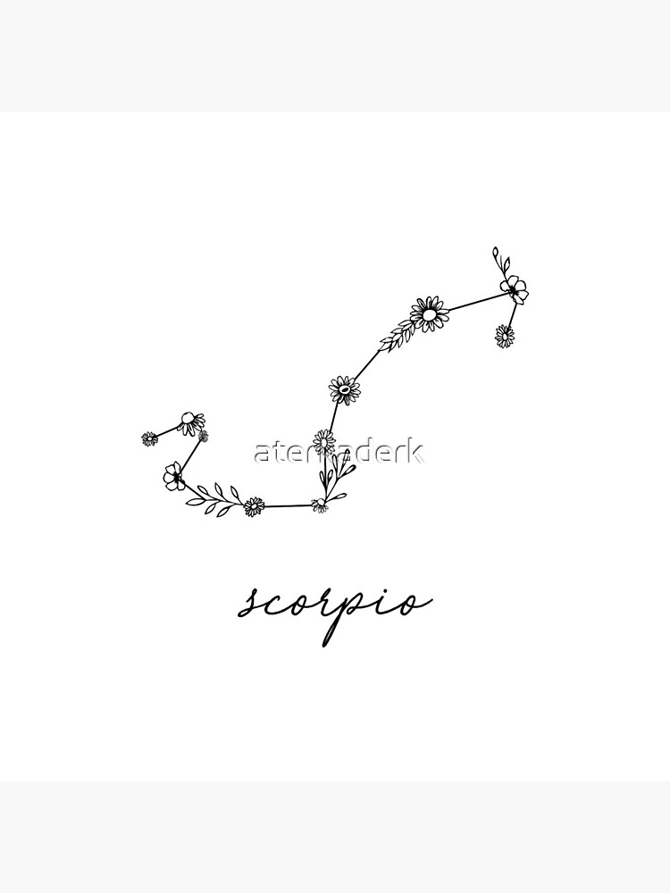 Scorpio Zodiac Wildflower Constellation by aterkaderk