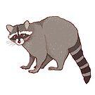 Gray cute raccoon by Elsbet