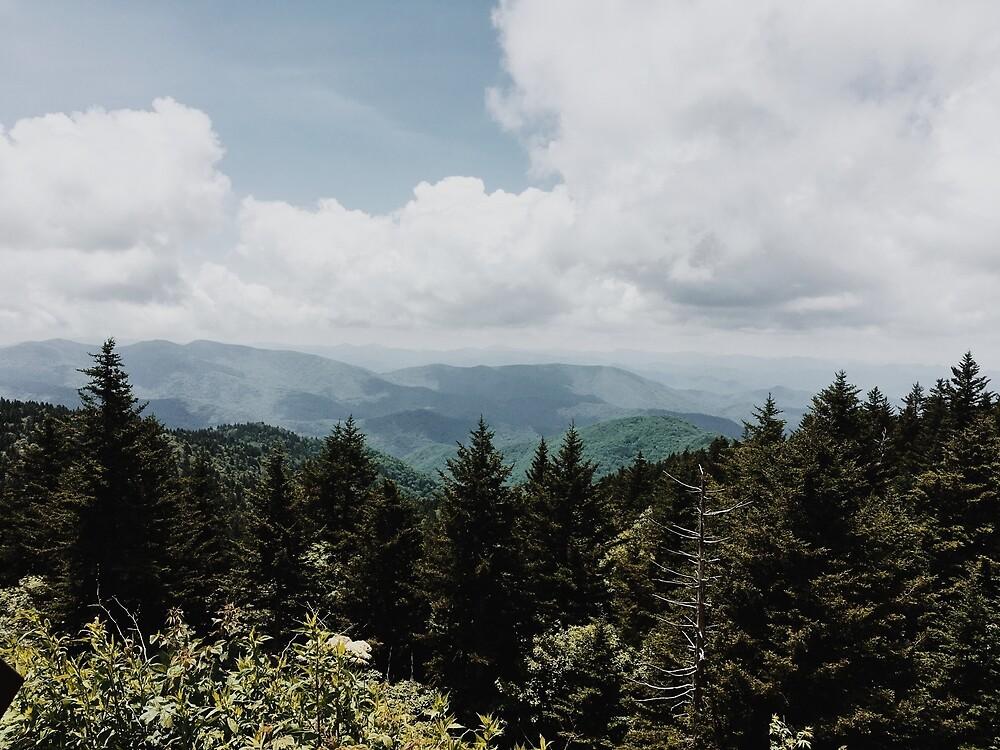 North Carolina Mountains by Bryce Robinson