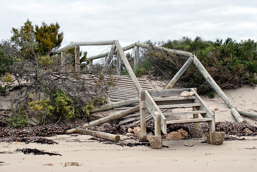 Storm Damage by Fred  Smith