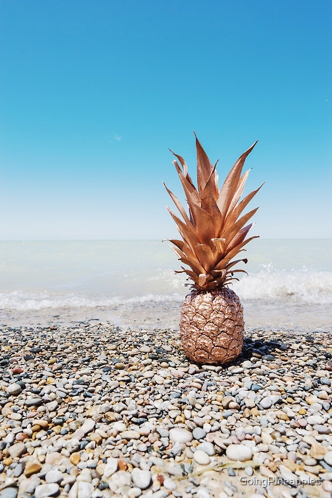 Pineapple on the rocks  by GoingPineapples