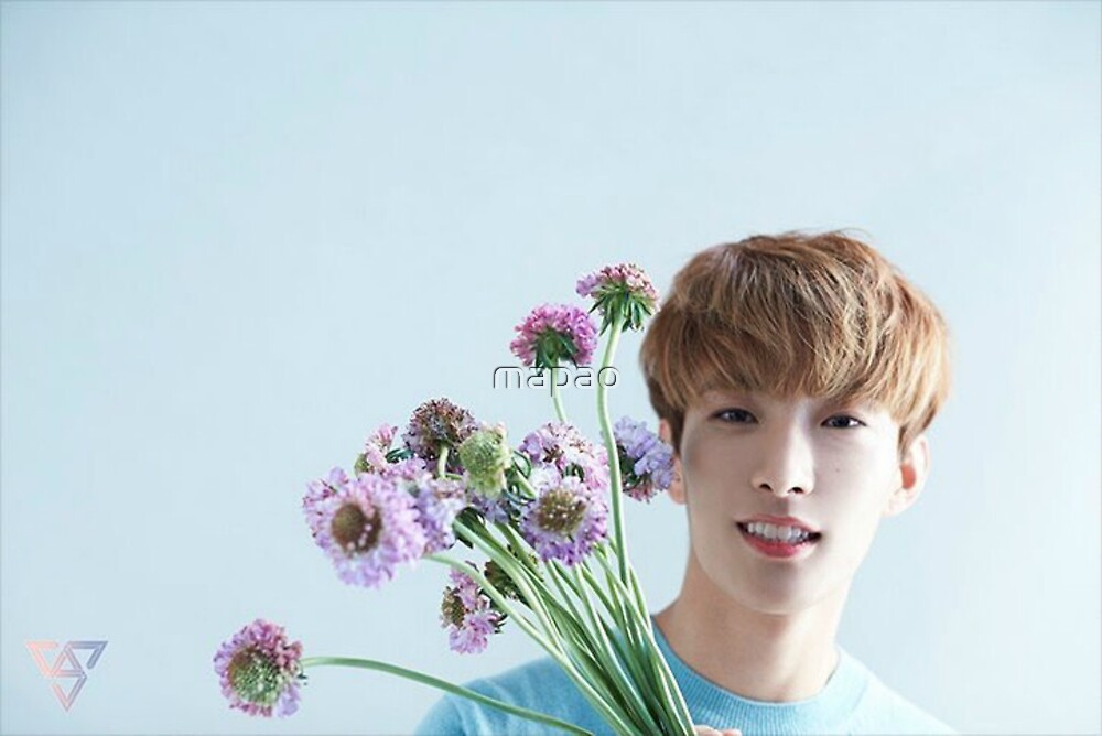 Seventeen DK Teen,Age Special by mapao