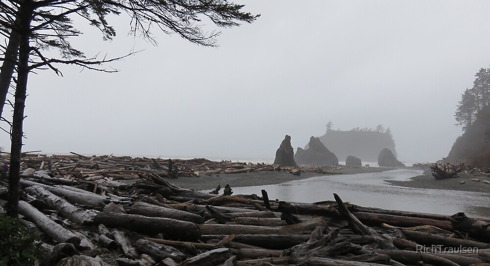 Rainy Ruby Beach 1 by RichTraulsen