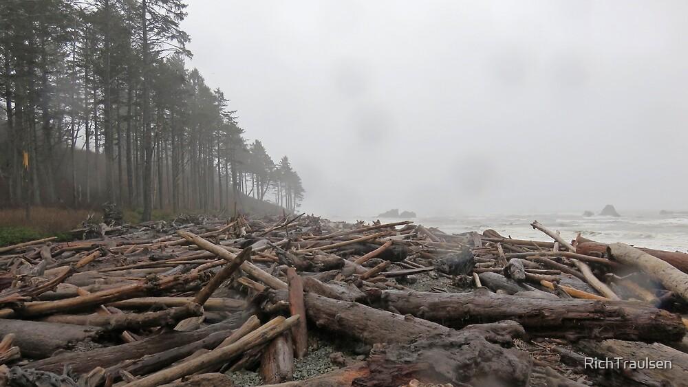 Rainy Ruby Beach 2 by RichTraulsen