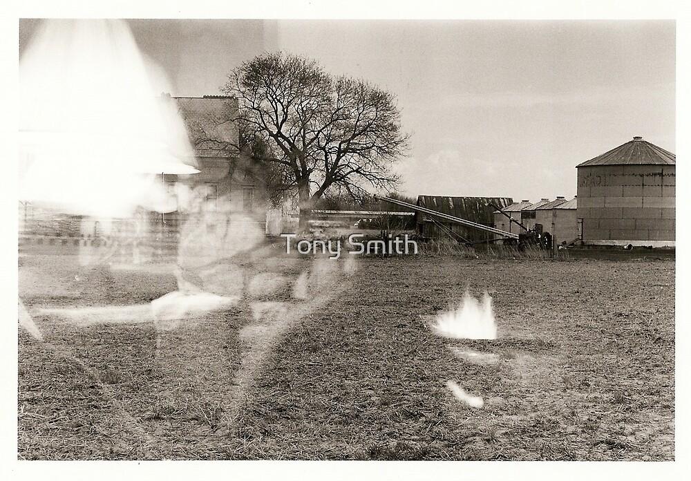 fade away by Tony Smith