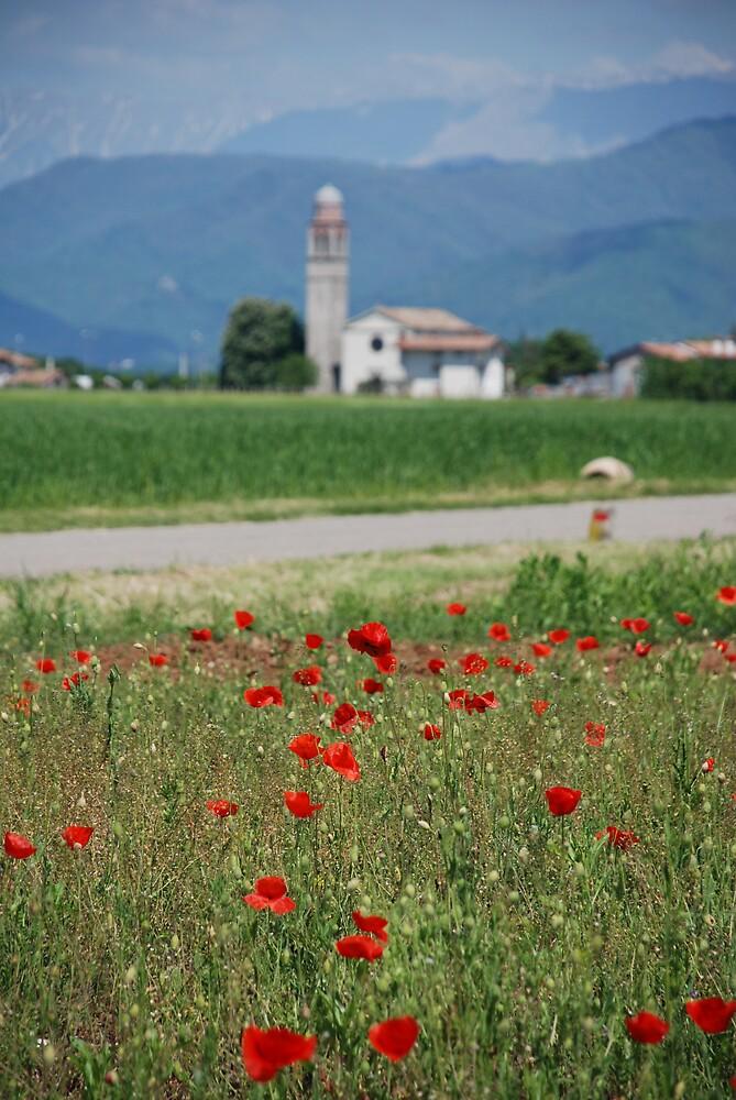 Poppy Field and Church by jojobob