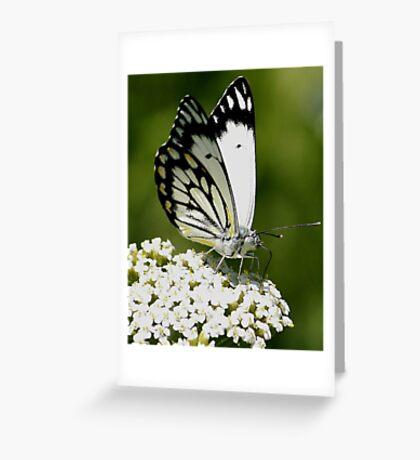 Flower Cafe Greeting Card