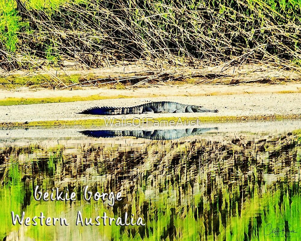 Geikie Gorge Crocodile Kimberley Western Australia by WallsOfFameAust