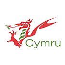 Cymru Dragon by James Goodchap