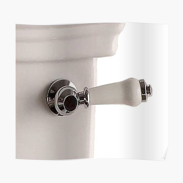 Handle of toilet bowl - Ручка унитаза Poster