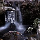 Frosty Waters by Chris Clark