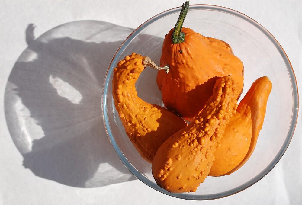 Four Orange Squashes  by jojobob