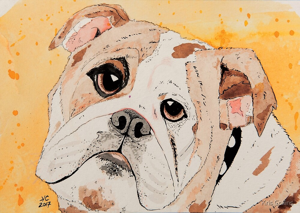 Dougie wants a doggie biscuit by Kris Collins