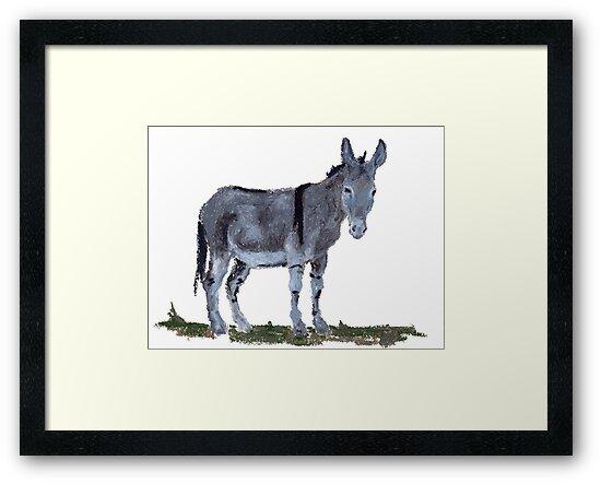 Donkey by salamandaz