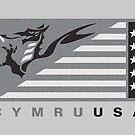 CymruUSA flag grays by James Goodchap
