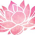 Lotus Flower  by Sam Palahnuk
