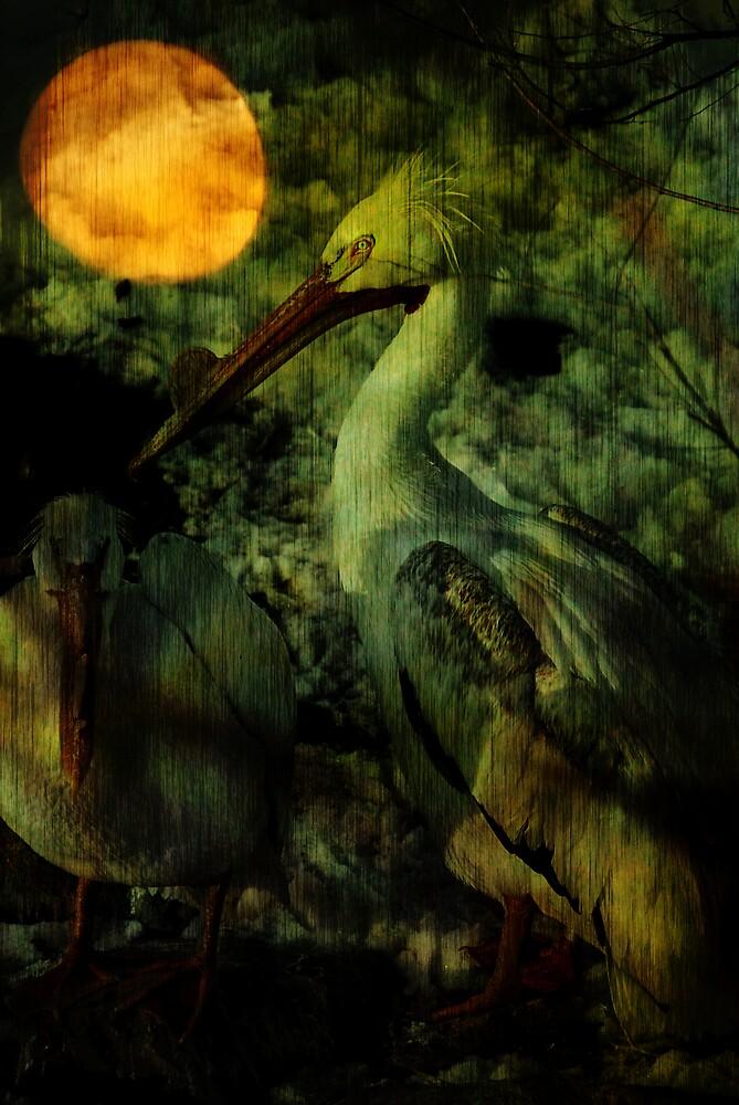 crane by Rachel  McKinnie