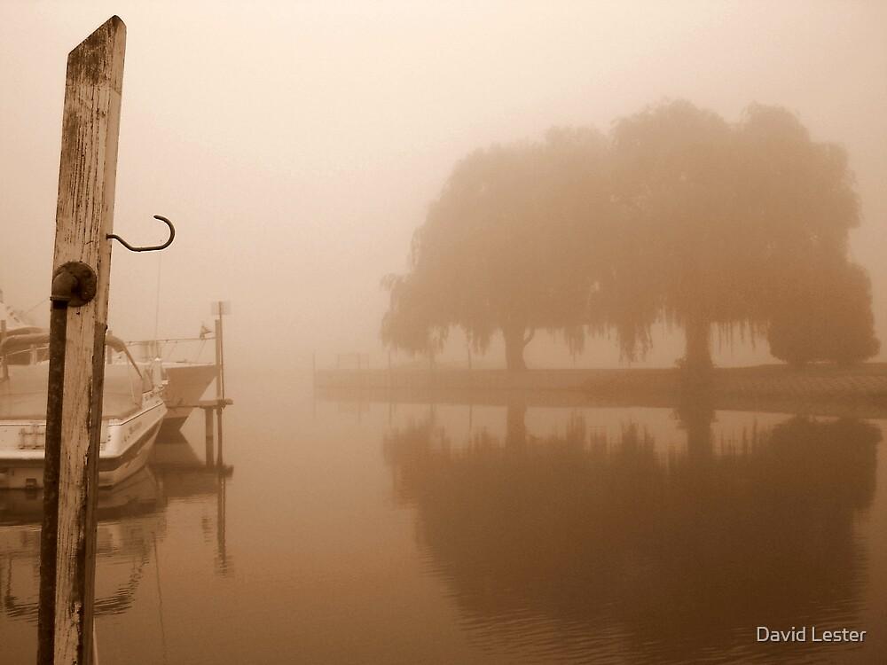 Misty Morning by David Lester