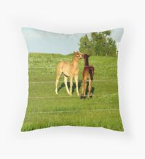 Caught Behind The Barn Throw Pillow