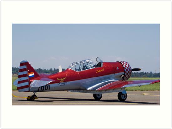 """North American AT-6 Harvard — SAAF 7001 — ""Inkwazi"""" Art ..."