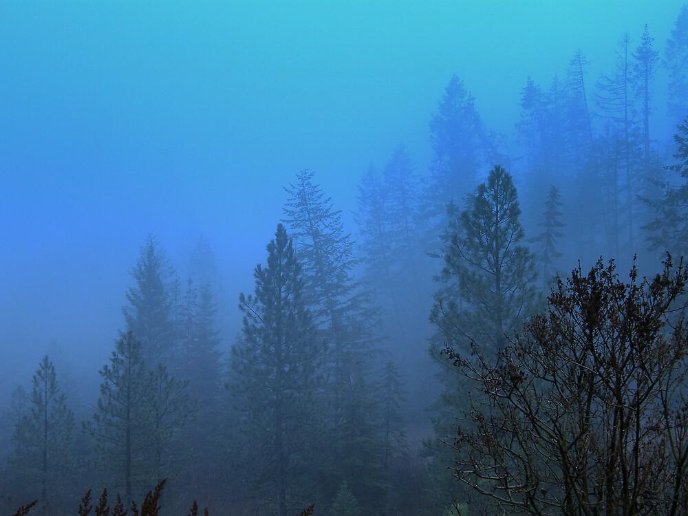 Winter morning by Cricket Jones