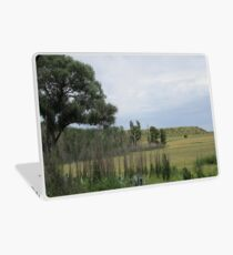 Trees and bushes Laptop Skin