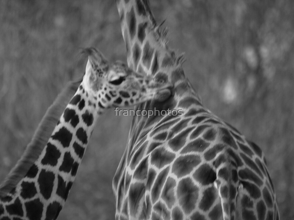 Mum You Smell So Good! by Franco De Luca Calce
