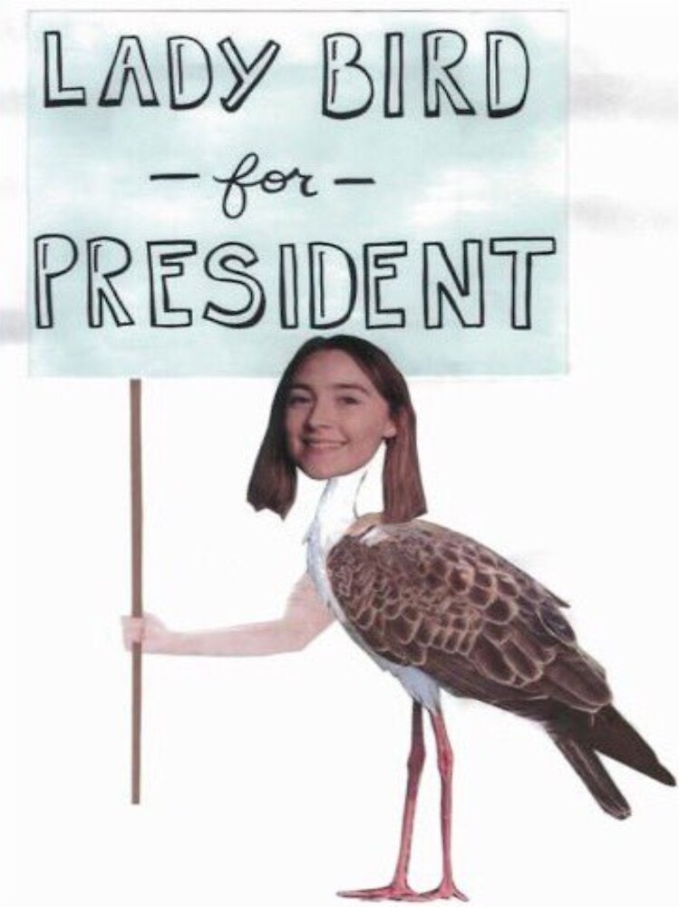 Vote for Lady Bird Dir. Greta Gerwig by anotherstar