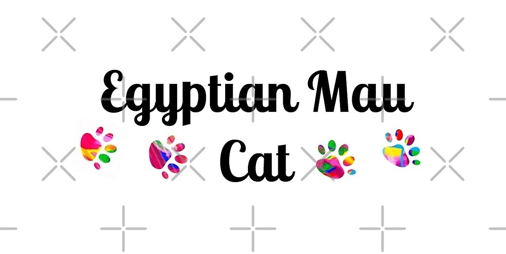 Egyptian Mau cat - star quality by myfavourite8