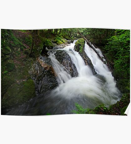 Foote Brook, Upper Falls, Summer Poster