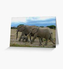 Amboseli Elephants Greeting Card