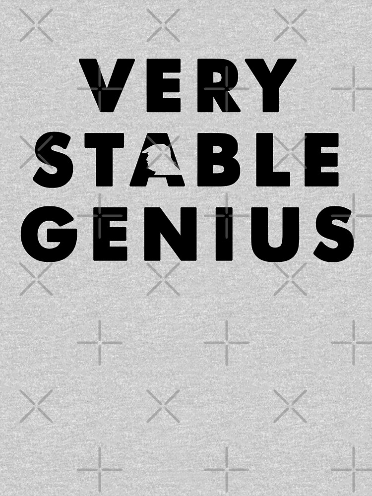 VERY STABLE GENIUS  by Phiiller