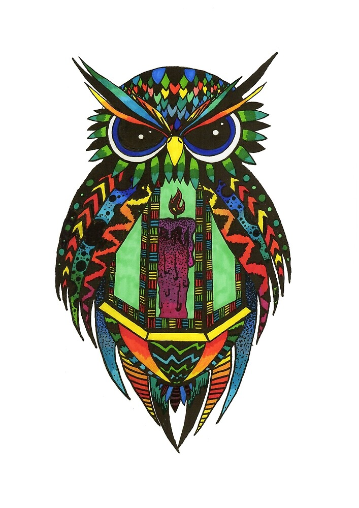 Colourful Owl Lantern by paulh illustrations