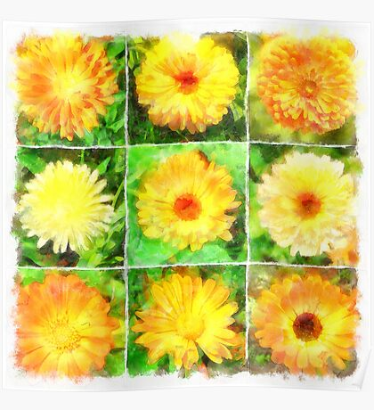 Watercolour Collage of Yellow And Orange Marigolds Poster