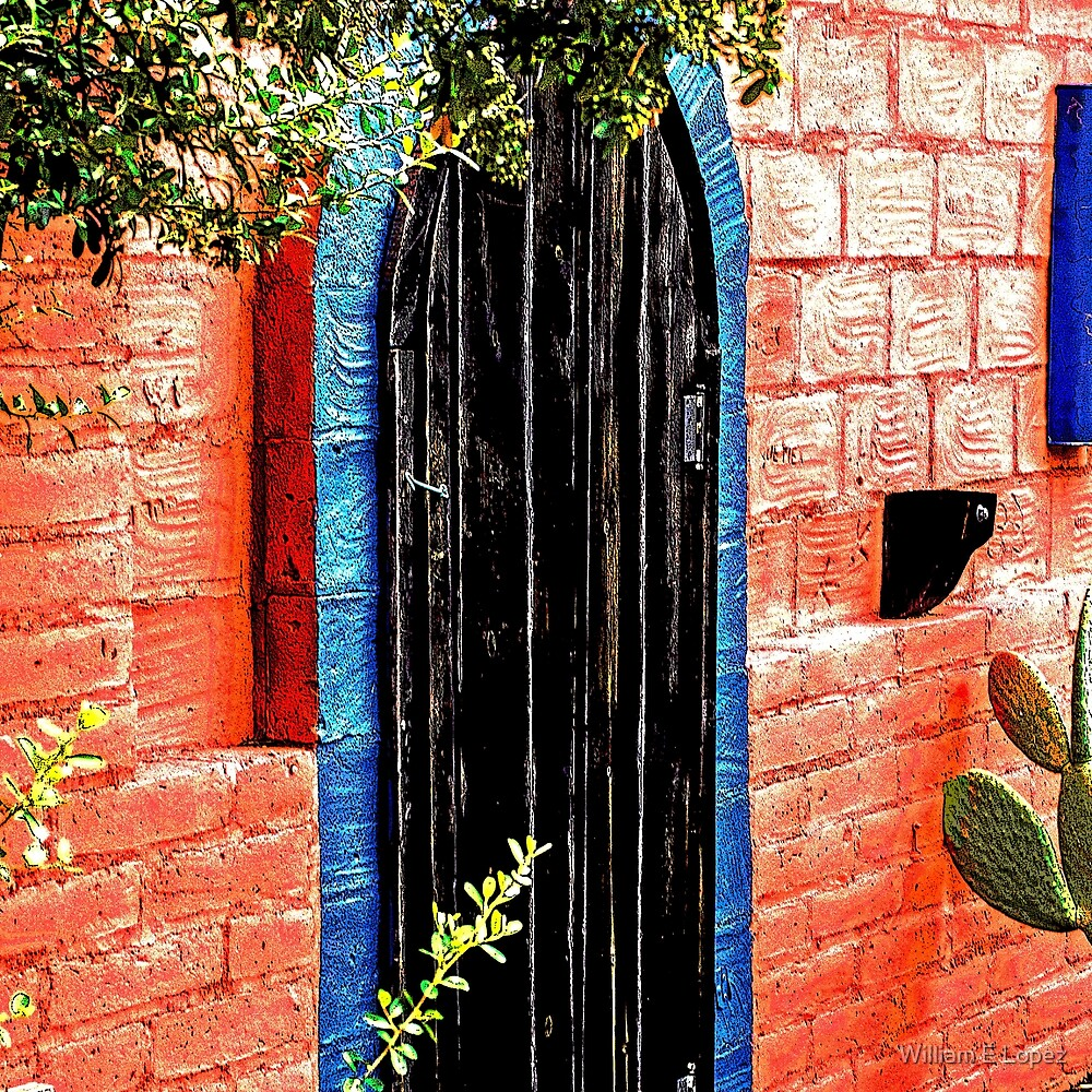 Southwest Black Door by William E Lopez