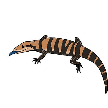 Blue tongued skink by zoe-wilson