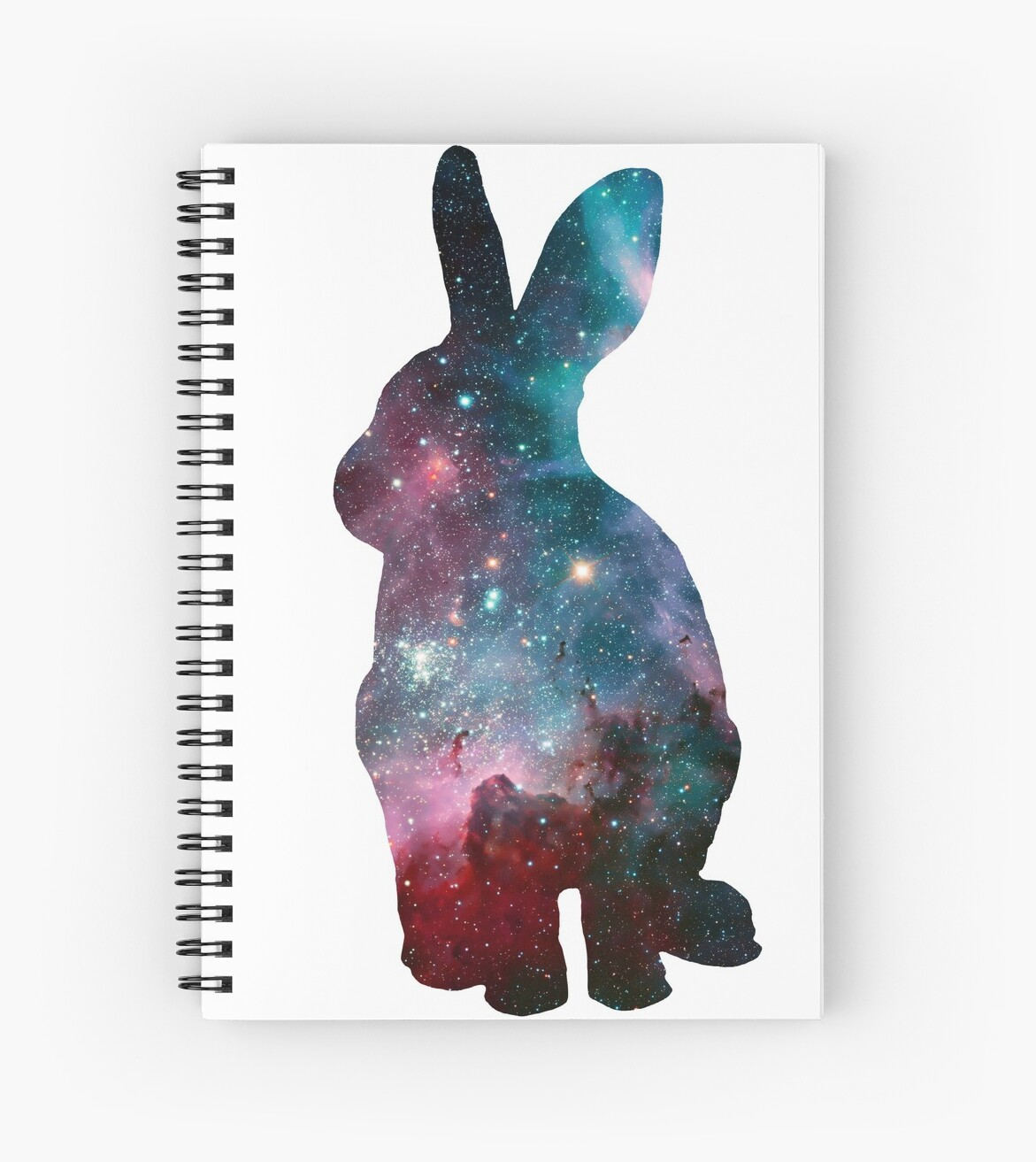Rabbit Galaxy by Sophie Cassidy