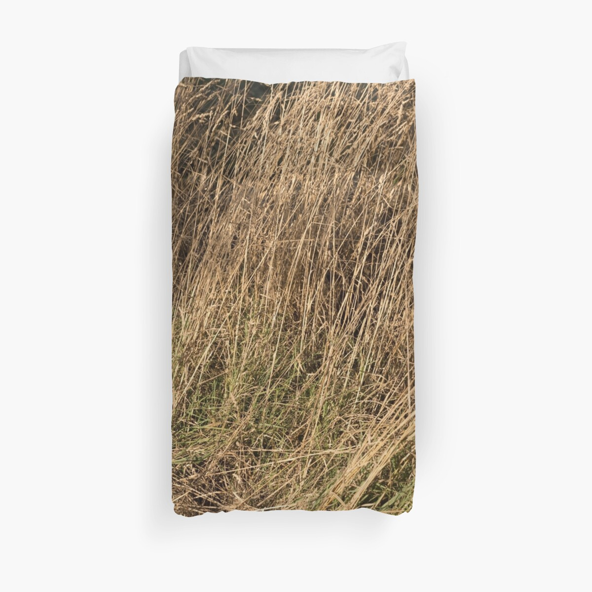 Dried Grassfield Pushed by textural