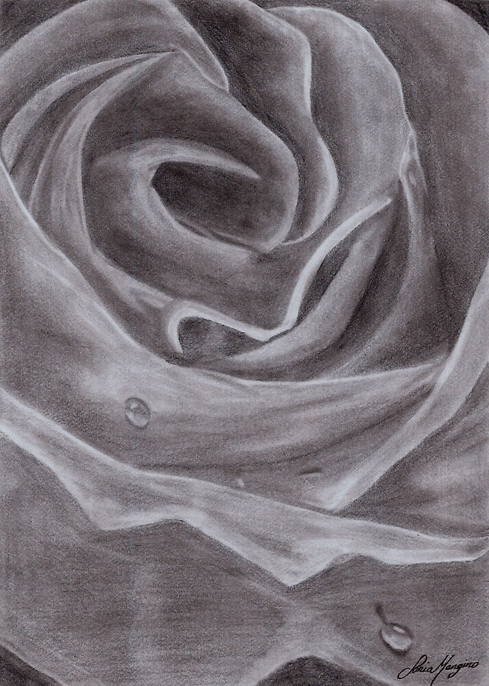 Watedrop Rose by Rosealine