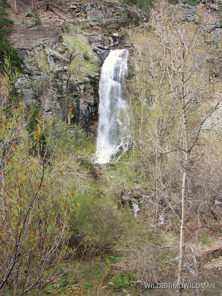 Bridal Veil Falls - Spearfish Canyon by WILDBRIMOWILDMAN
