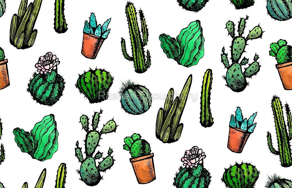 Mexican Cactus by Rashed Chowdhury
