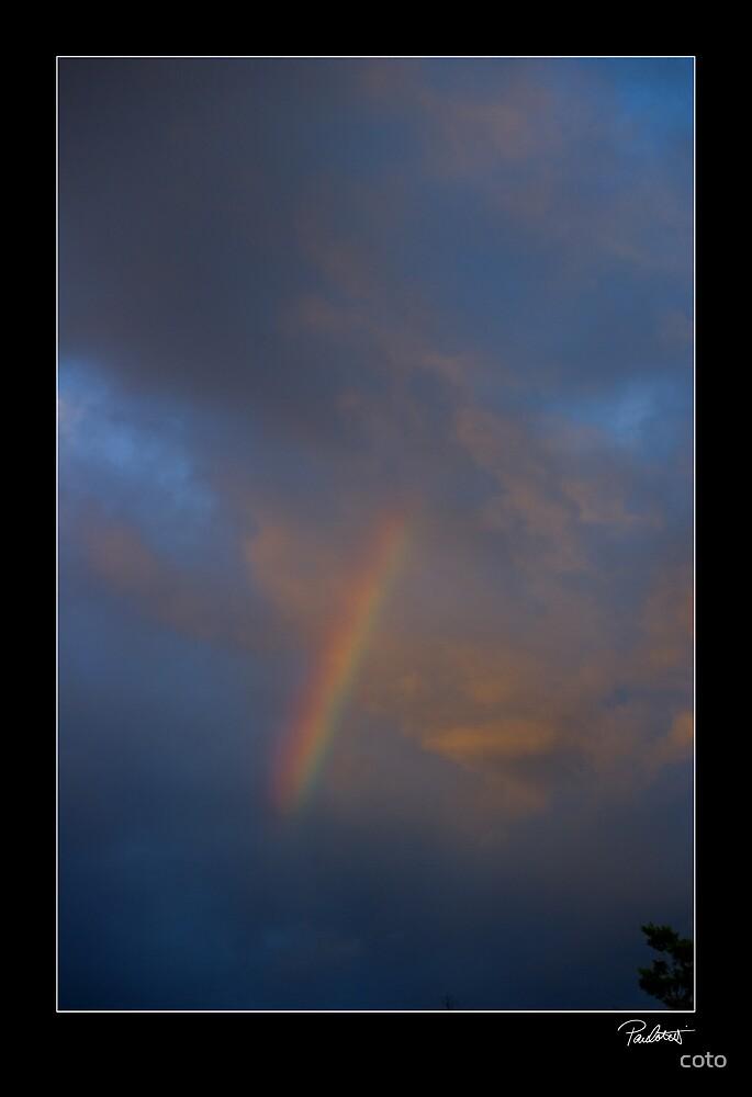 Rainbow Delight by Paul Cotelli