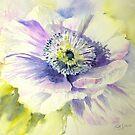 Purple Anemone by Ruth S Harris