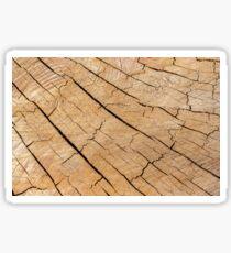 Shattered Wooden Log - Alternative III Sticker