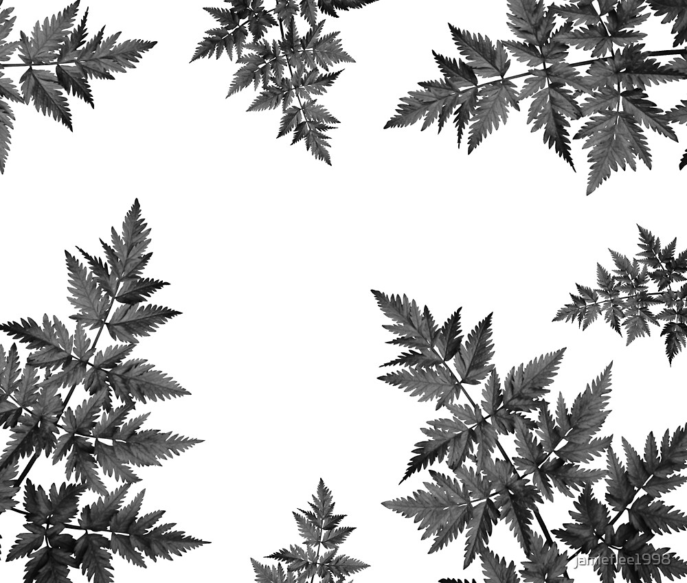 Black and White Leaves by jamieflee1998